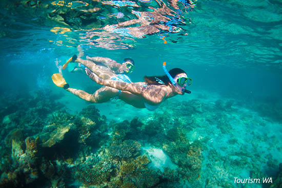 Snorkelling at Turquoise Bay near Exmouth